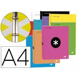 Carpeta 4 anillas 25mm Liderpapel Antartik A4 colores surtidos carton forrado