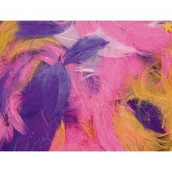 Plumas de Ave Colores surtidos itKrea