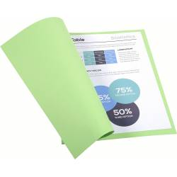 Subcarpeta Cartulina Reciclada DIN A4 Exacompta Verde Claro 170 gr